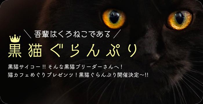 黒猫ぐらんぷり