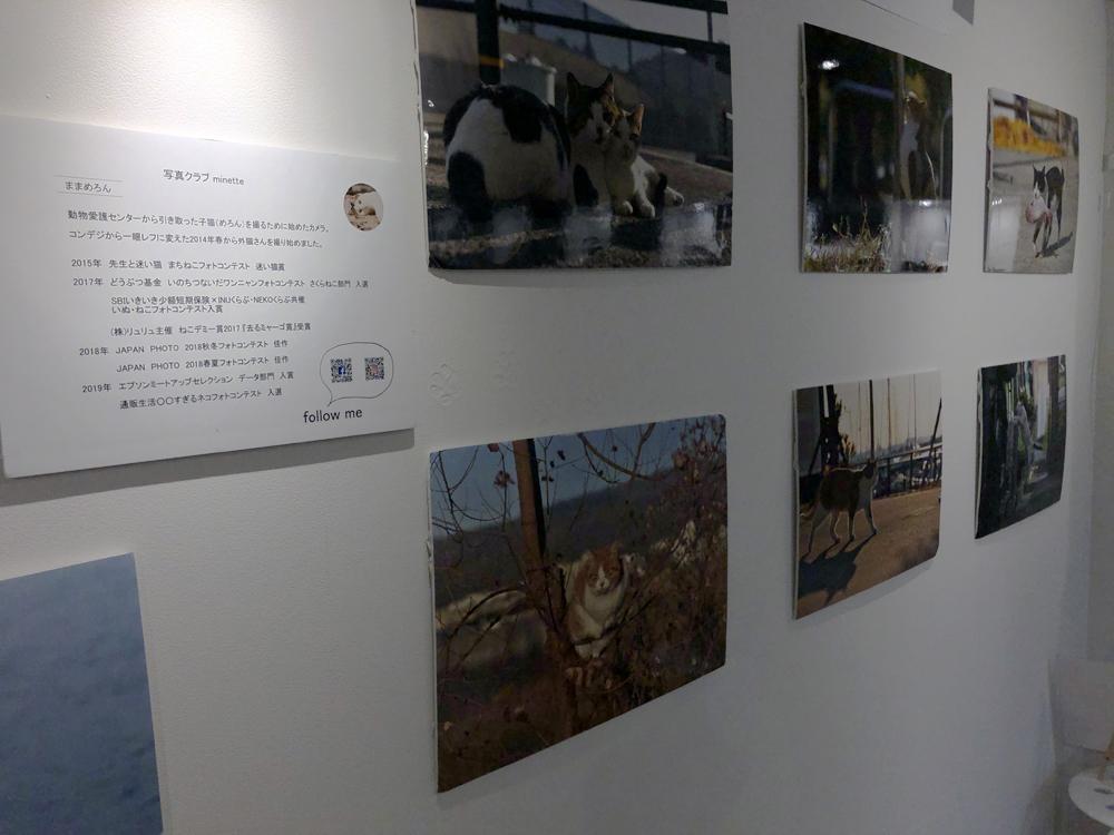 1階にはギャラリー・レンタルスペースがあります。この日は写真展を開催中でした。
