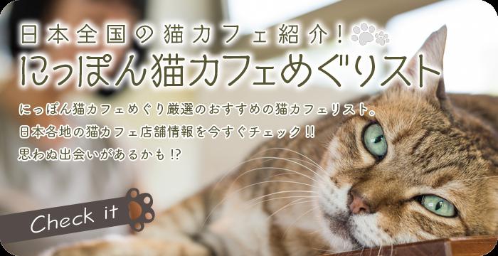猫カフェめぐりスト